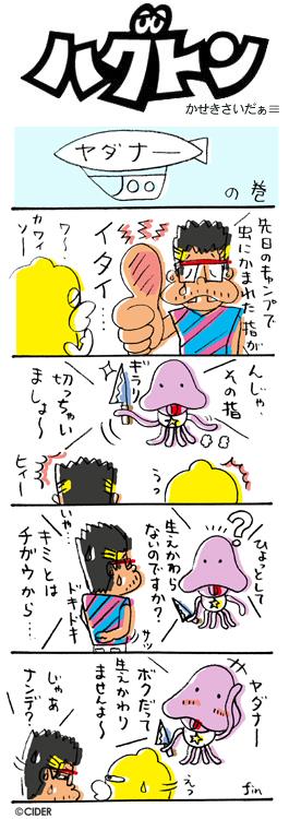 kaseki_274.jpg