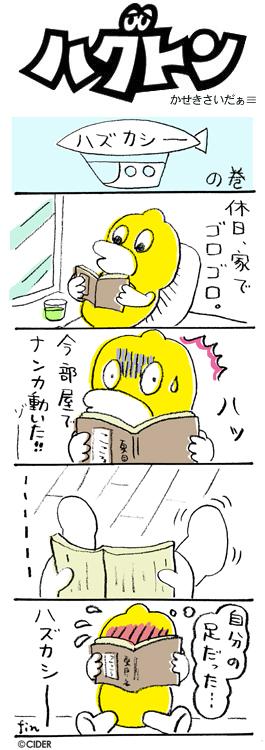 kaseki_281.jpg