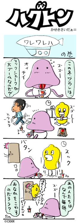 kaseki_285.jpg