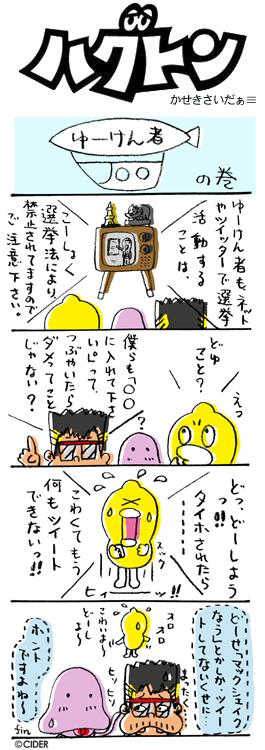 kaseki_286.jpg