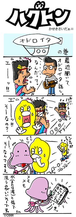 kaseki_293.jpg