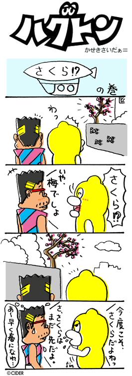 kaseki_299.jpg