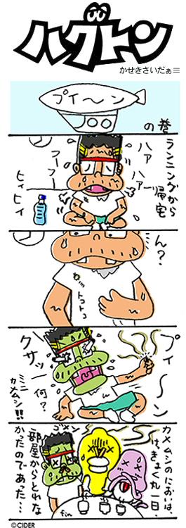 kaseki_306.jpg