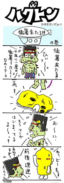 kaseki_317.jpg
