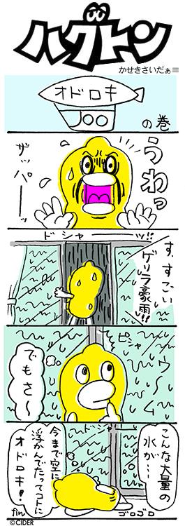 kaseki_319.jpg