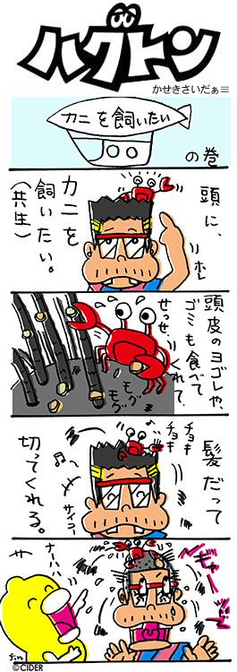 kaseki_325.jpg