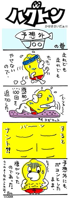 kaseki_328.jpg