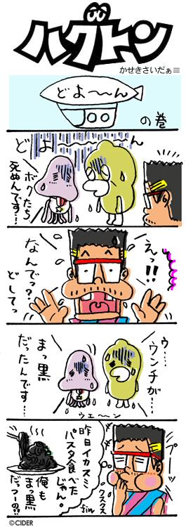 kaseki_333.jpg