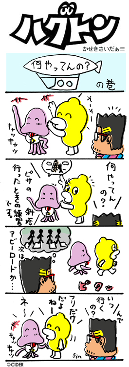 kaseki_335.jpg
