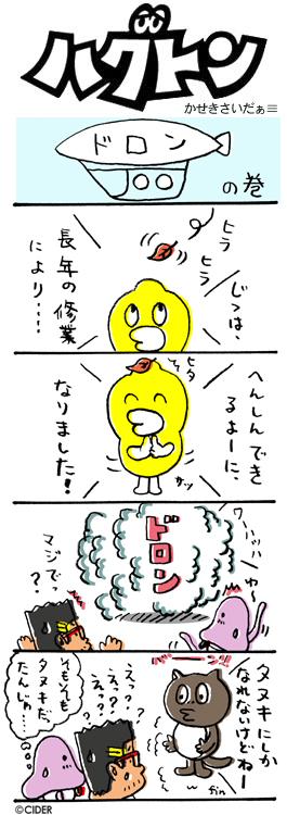 kaseki_338.jpg