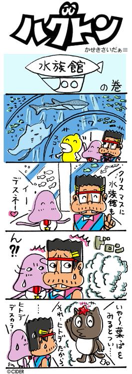 kaseki_340.jpg