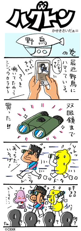 kaseki_361.jpg