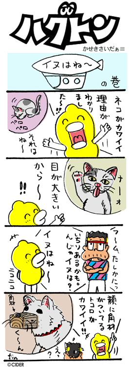 kaseki_376.jpg