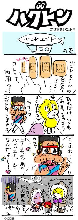kaseki_377.jpg