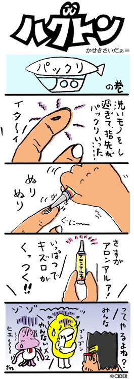 kaseki_386.jpg