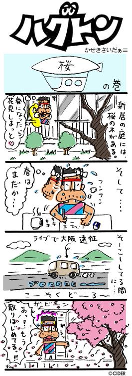 kaseki_407.jpg