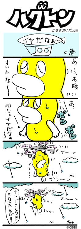 kaseki_410.jpg