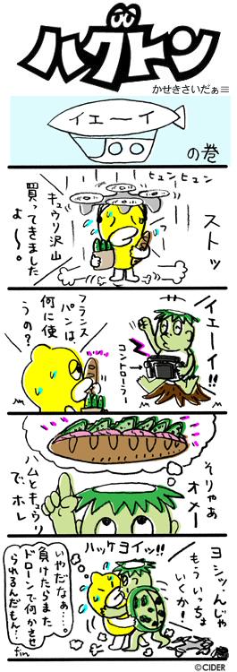 kaseki_412.jpg