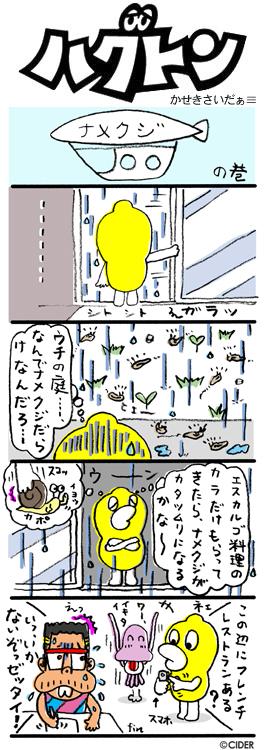 kaseki_419.jpg