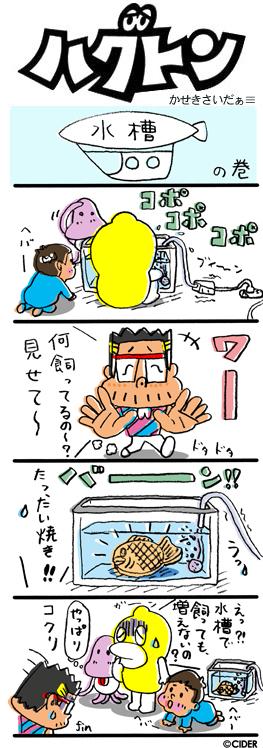kaseki_451.jpg