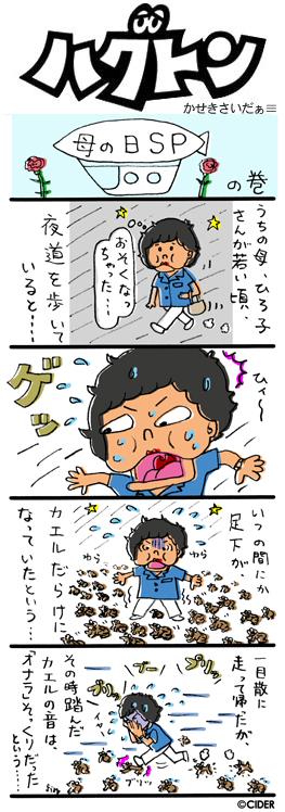 kaseki_461.jpg