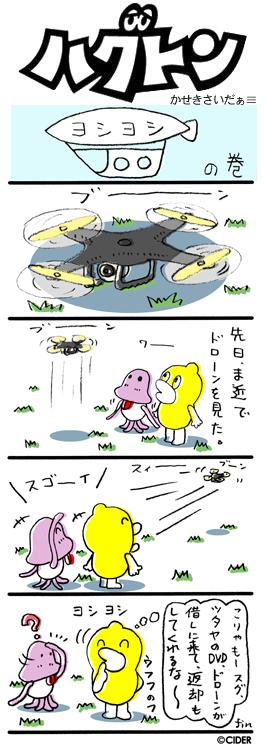 kaseki_464.jpg