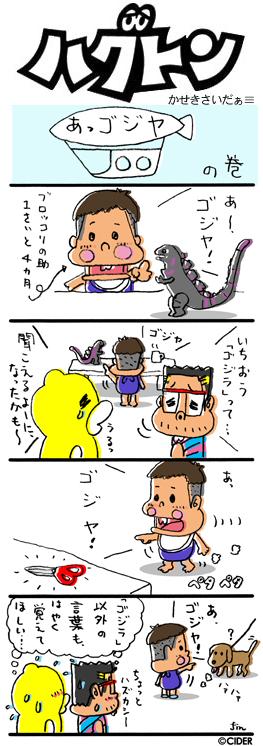 kaseki_475.jpg