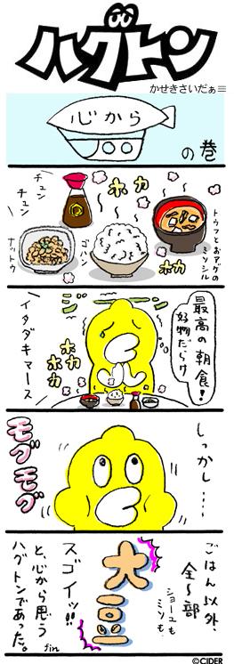 kaseki_497.jpg