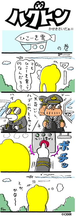 kaseki_503.jpg