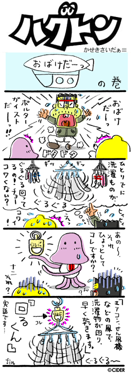 kaseki_507.jpg