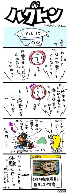 kaseki_542.jpg