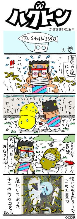 kaseki_555.jpg