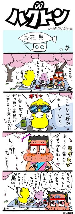 kaseki_556.jpg