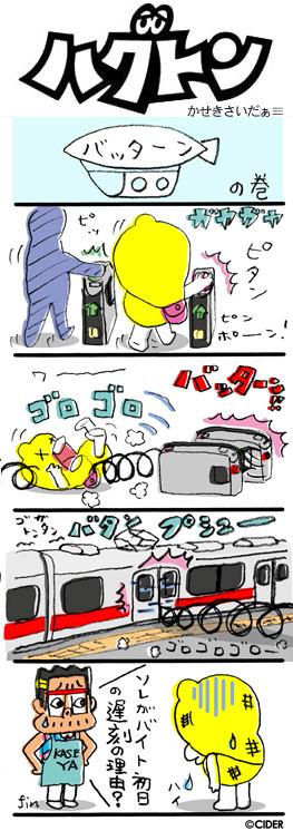 kaseki_564.jpg