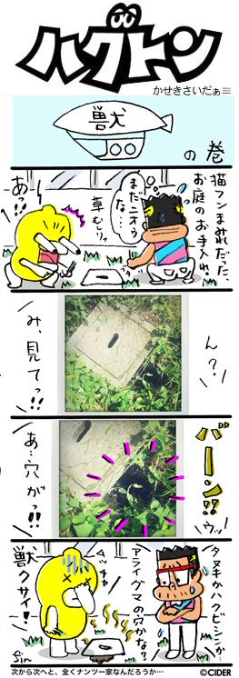 kaseki_565.jpg