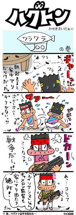 kaseki_569.jpg