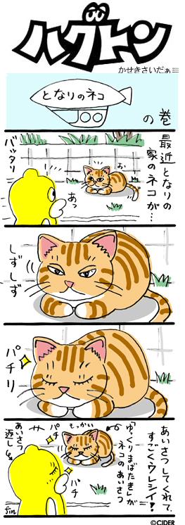 kaseki_606.jpg