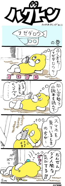 kaseki_617.jpg