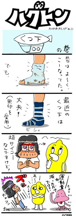 kaseki_630.jpg