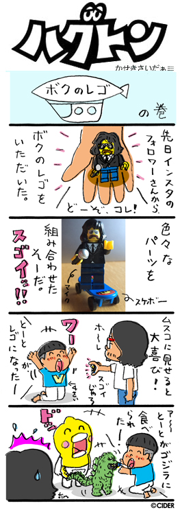 kaseki_639.jpg