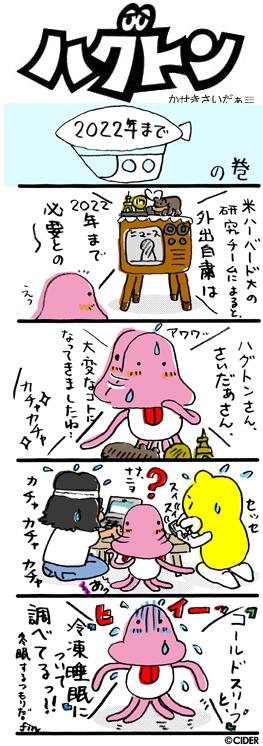 kaseki_648.jpg