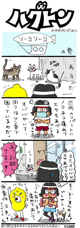 kaseki_661.jpg