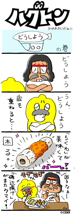 kaseki_670.jpg