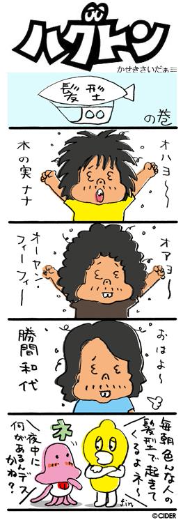 kaseki_685.jpg